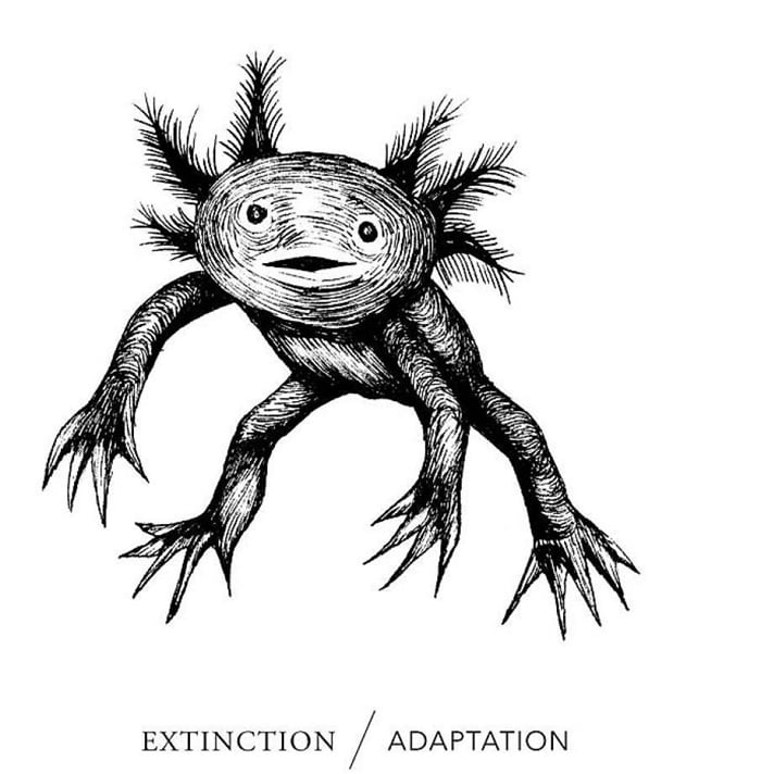 Extinction/Adaptation